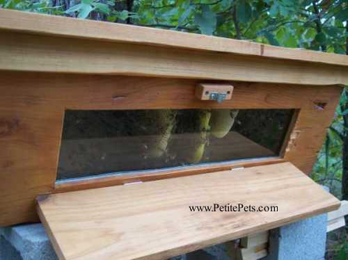 Window Top Bar Hive U2013 Free Shipping